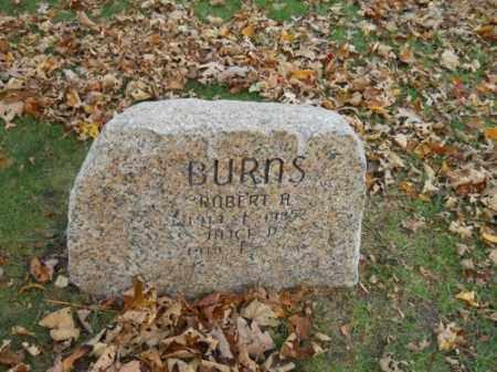 BURNS, ALICE D - Barnstable County, Massachusetts | ALICE D BURNS - Massachusetts Gravestone Photos