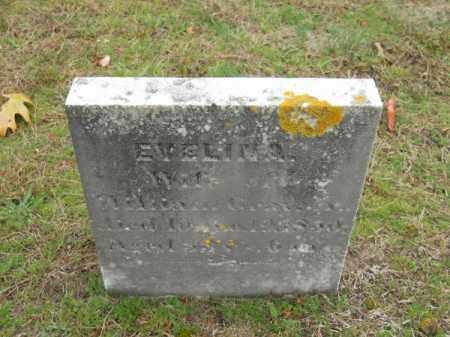GRAY, EVELINA - Barnstable County, Massachusetts | EVELINA GRAY - Massachusetts Gravestone Photos
