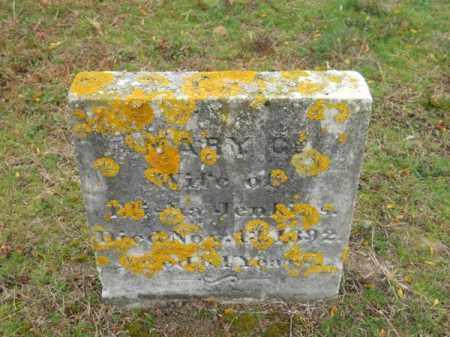 JENKINS, MARY G - Barnstable County, Massachusetts | MARY G JENKINS - Massachusetts Gravestone Photos
