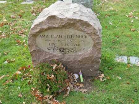 STEPENUCK, AMIE LEAH - Barnstable County, Massachusetts | AMIE LEAH STEPENUCK - Massachusetts Gravestone Photos