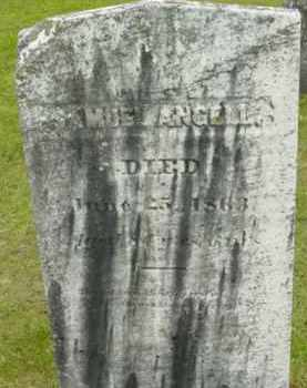 ANGELL, SAMUEL - Berkshire County, Massachusetts | SAMUEL ANGELL - Massachusetts Gravestone Photos
