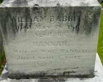 PLATT BABBITT, HANNAH - Berkshire County, Massachusetts | HANNAH PLATT BABBITT - Massachusetts Gravestone Photos