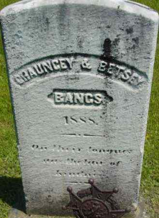 BANGS, BETSEY - Berkshire County, Massachusetts | BETSEY BANGS - Massachusetts Gravestone Photos