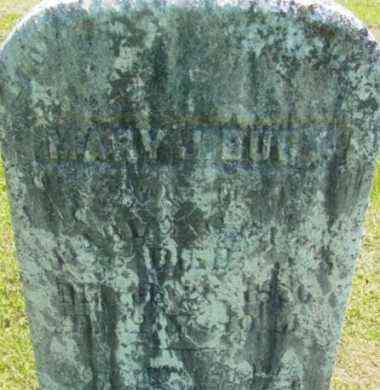 BANGS, MARY J - Berkshire County, Massachusetts | MARY J BANGS - Massachusetts Gravestone Photos