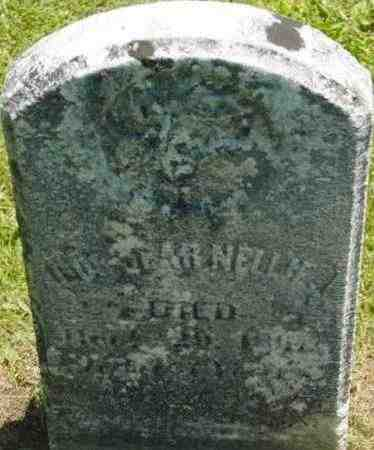 BANGS, NELLIE - Berkshire County, Massachusetts | NELLIE BANGS - Massachusetts Gravestone Photos