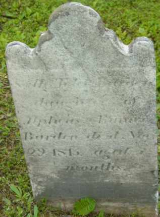 BARDIN, SALLY - Berkshire County, Massachusetts | SALLY BARDIN - Massachusetts Gravestone Photos