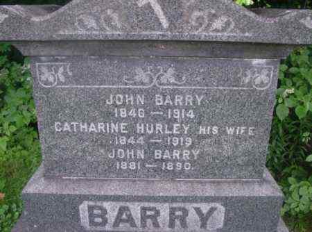 HURLEY BARRY, CATHARINE - Berkshire County, Massachusetts | CATHARINE HURLEY BARRY - Massachusetts Gravestone Photos