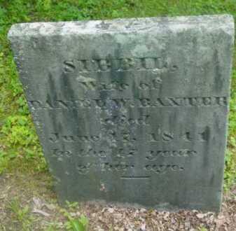 BAXTER, SIBBEL - Berkshire County, Massachusetts   SIBBEL BAXTER - Massachusetts Gravestone Photos