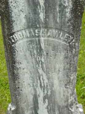 BEERS, THOMAS HAWLEY - Berkshire County, Massachusetts | THOMAS HAWLEY BEERS - Massachusetts Gravestone Photos