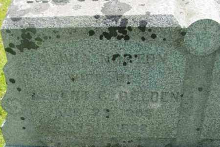 NORTON, OLIVIA - Berkshire County, Massachusetts | OLIVIA NORTON - Massachusetts Gravestone Photos