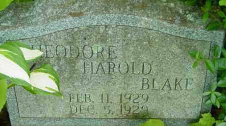 BLAKE, THEODORE HAROLD - Berkshire County, Massachusetts | THEODORE HAROLD BLAKE - Massachusetts Gravestone Photos