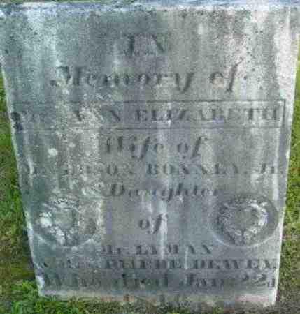 BONNEY, ANN ELIZABETH - Berkshire County, Massachusetts | ANN ELIZABETH BONNEY - Massachusetts Gravestone Photos