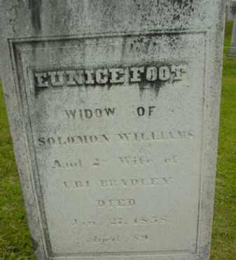 BRADLEY, EUNICE - Berkshire County, Massachusetts | EUNICE BRADLEY - Massachusetts Gravestone Photos