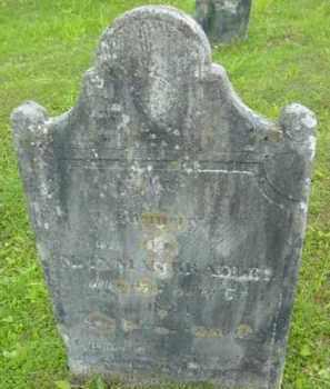 BRADLEY, LYMAN - Berkshire County, Massachusetts | LYMAN BRADLEY - Massachusetts Gravestone Photos