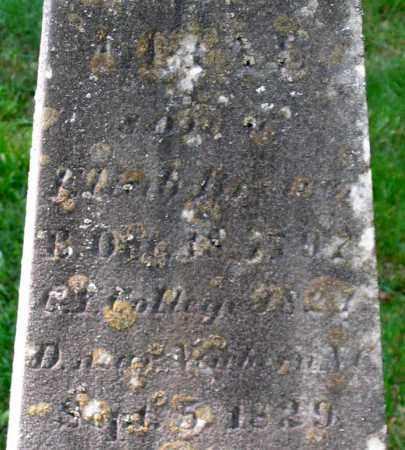 BREWER, ELIAB - Berkshire County, Massachusetts | ELIAB BREWER - Massachusetts Gravestone Photos