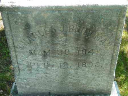 BRIDGMAN, CHARLES J - Berkshire County, Massachusetts | CHARLES J BRIDGMAN - Massachusetts Gravestone Photos