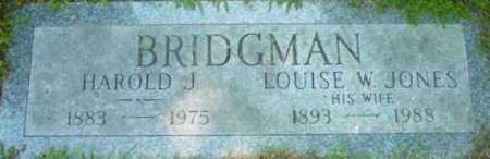 BRIDGMAN, LOUISE W - Berkshire County, Massachusetts | LOUISE W BRIDGMAN - Massachusetts Gravestone Photos
