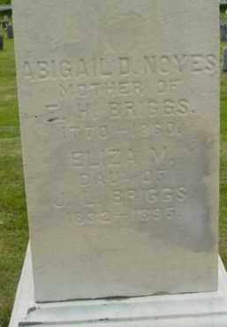 BRIGGS, ABIGAIL D - Berkshire County, Massachusetts | ABIGAIL D BRIGGS - Massachusetts Gravestone Photos