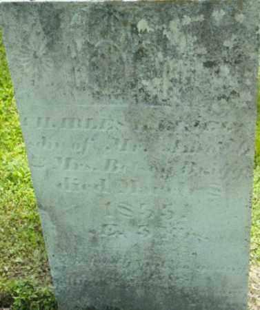 BRIGGS, CHARLES H - Berkshire County, Massachusetts | CHARLES H BRIGGS - Massachusetts Gravestone Photos