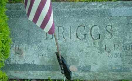 BRIGGS, CHARLES L - Berkshire County, Massachusetts | CHARLES L BRIGGS - Massachusetts Gravestone Photos