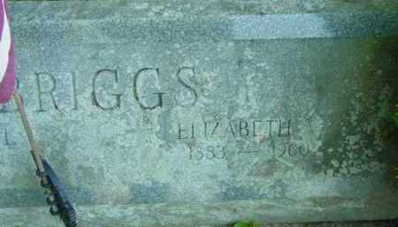 BRIGGS, ELIZABETH - Berkshire County, Massachusetts | ELIZABETH BRIGGS - Massachusetts Gravestone Photos