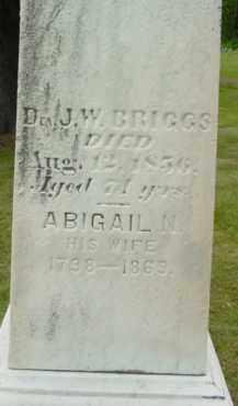 BRIGGS, ABIGAIL N - Berkshire County, Massachusetts | ABIGAIL N BRIGGS - Massachusetts Gravestone Photos