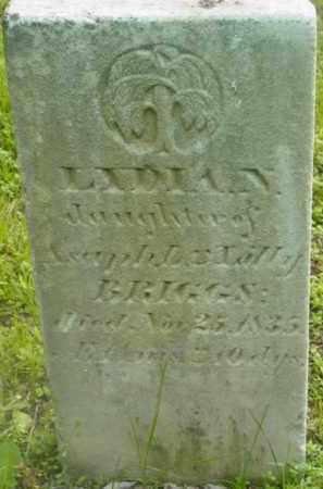 BRIGGS, LYDIA N - Berkshire County, Massachusetts | LYDIA N BRIGGS - Massachusetts Gravestone Photos
