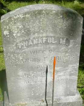 BRIGGS, THANKFUL M - Berkshire County, Massachusetts   THANKFUL M BRIGGS - Massachusetts Gravestone Photos