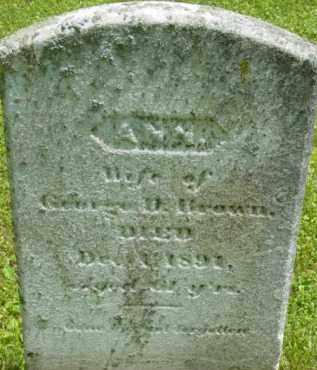 BROWN, ANN - Berkshire County, Massachusetts | ANN BROWN - Massachusetts Gravestone Photos