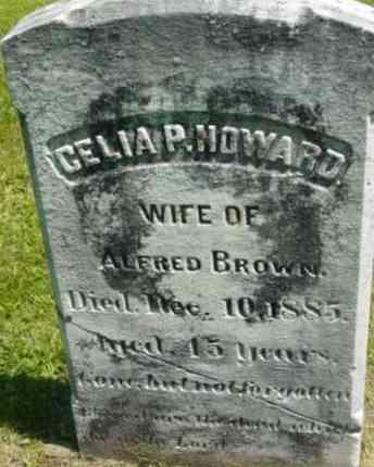 BROWN, CELIA P - Berkshire County, Massachusetts   CELIA P BROWN - Massachusetts Gravestone Photos