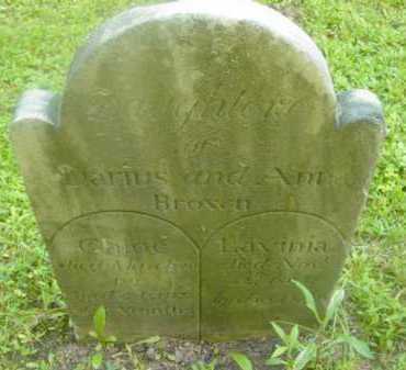 BROWN, LAVINIA - Berkshire County, Massachusetts | LAVINIA BROWN - Massachusetts Gravestone Photos