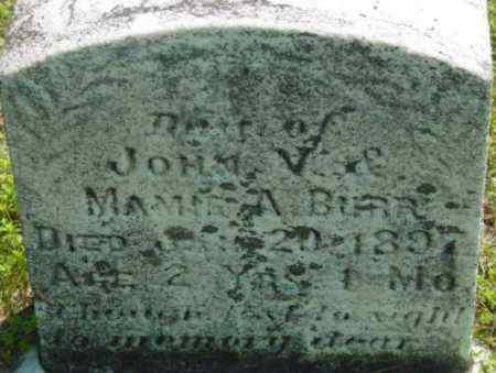 BURR, DAUGHTER - Berkshire County, Massachusetts | DAUGHTER BURR - Massachusetts Gravestone Photos