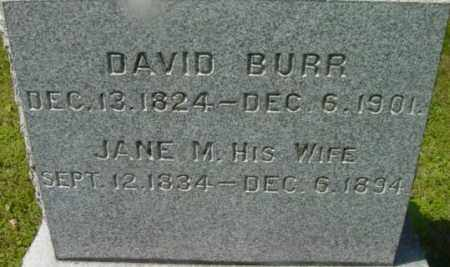 BURR, DAVID - Berkshire County, Massachusetts | DAVID BURR - Massachusetts Gravestone Photos