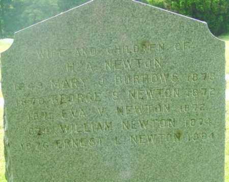 NEWTON, GEORGE S - Berkshire County, Massachusetts | GEORGE S NEWTON - Massachusetts Gravestone Photos