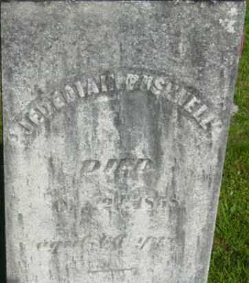 BUSHNELL, JEDEDIAH - Berkshire County, Massachusetts | JEDEDIAH BUSHNELL - Massachusetts Gravestone Photos