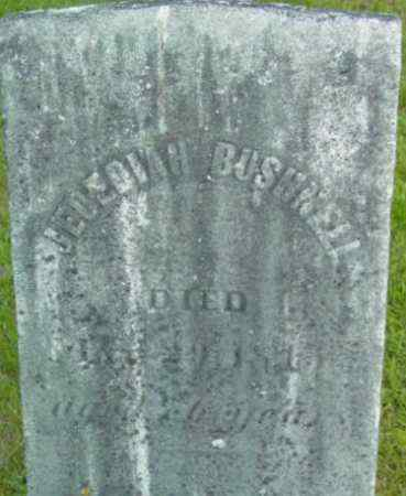 BUSHNELL, JEDEDIAH - Berkshire County, Massachusetts   JEDEDIAH BUSHNELL - Massachusetts Gravestone Photos