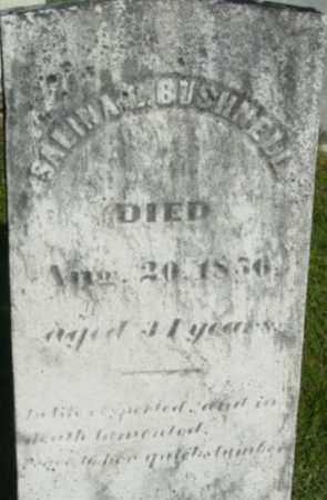 BUSHNELL, SALINA L - Berkshire County, Massachusetts   SALINA L BUSHNELL - Massachusetts Gravestone Photos
