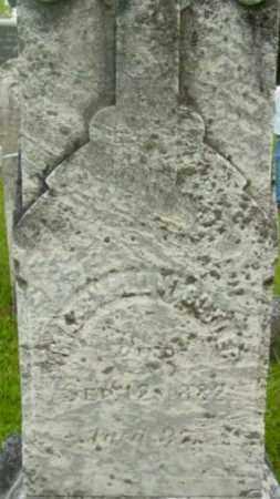 BUTLER, MARSHALL W - Berkshire County, Massachusetts | MARSHALL W BUTLER - Massachusetts Gravestone Photos