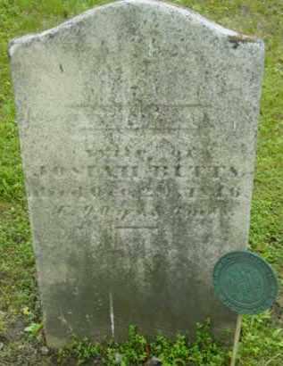 BUTT, LYDIA - Berkshire County, Massachusetts | LYDIA BUTT - Massachusetts Gravestone Photos
