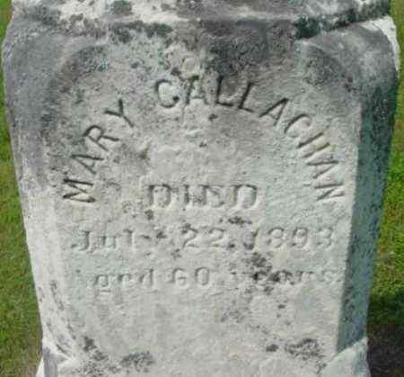 CALLAGHAN, MARY - Berkshire County, Massachusetts | MARY CALLAGHAN - Massachusetts Gravestone Photos