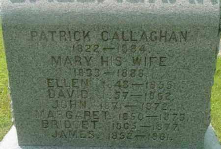 CALLAGHAN, ELLEN - Berkshire County, Massachusetts | ELLEN CALLAGHAN - Massachusetts Gravestone Photos