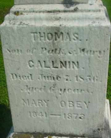 CALLNIN, THOMAS - Berkshire County, Massachusetts | THOMAS CALLNIN - Massachusetts Gravestone Photos