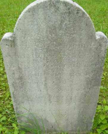 CARPENTER, AMEY - Berkshire County, Massachusetts | AMEY CARPENTER - Massachusetts Gravestone Photos
