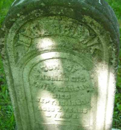 CARSON, HARRIE - Berkshire County, Massachusetts   HARRIE CARSON - Massachusetts Gravestone Photos