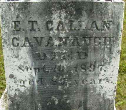 CAVANAUGH, E T - Berkshire County, Massachusetts | E T CAVANAUGH - Massachusetts Gravestone Photos