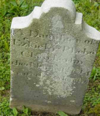 CHAMBERLIN, FEMALE - Berkshire County, Massachusetts | FEMALE CHAMBERLIN - Massachusetts Gravestone Photos