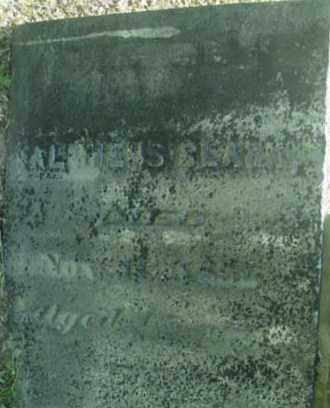 CLARK, ALPHEUS - Berkshire County, Massachusetts | ALPHEUS CLARK - Massachusetts Gravestone Photos