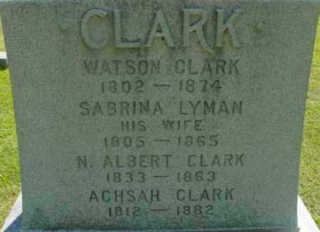 CLARK, N ALBERT - Berkshire County, Massachusetts | N ALBERT CLARK - Massachusetts Gravestone Photos