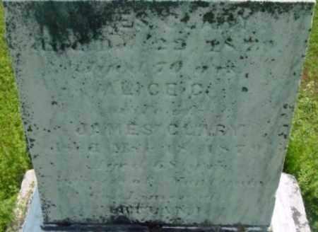 CLARY, ALICE - Berkshire County, Massachusetts | ALICE CLARY - Massachusetts Gravestone Photos