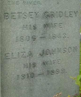 JOHNSON, ELIZA - Berkshire County, Massachusetts   ELIZA JOHNSON - Massachusetts Gravestone Photos
